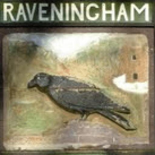 Raveningham Community